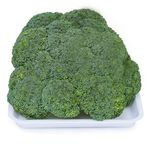 Square 150 brocolis ninja 0846